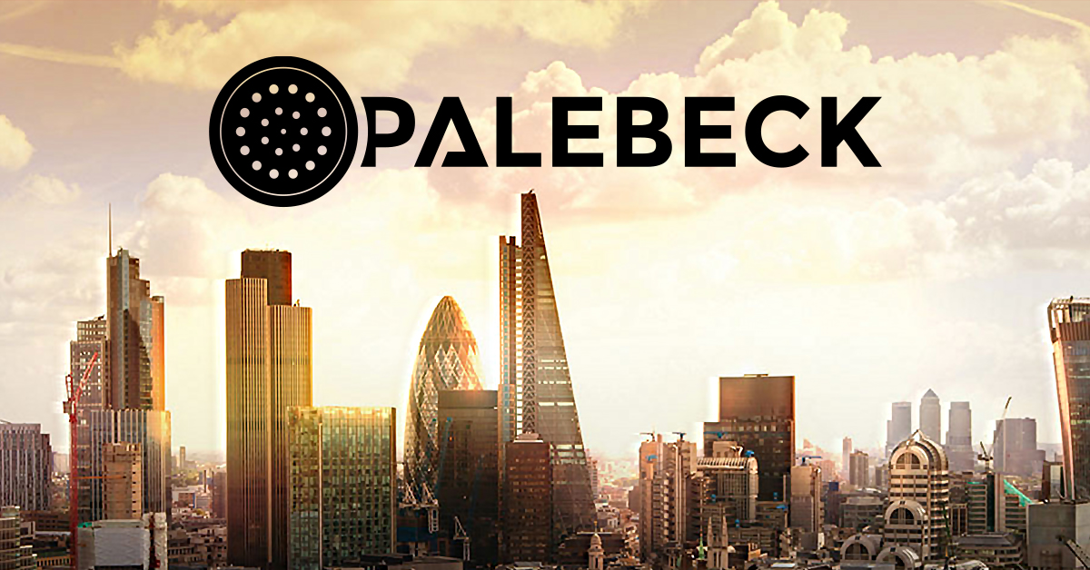 Website design and creation for a telecommunications company, Palebeck.